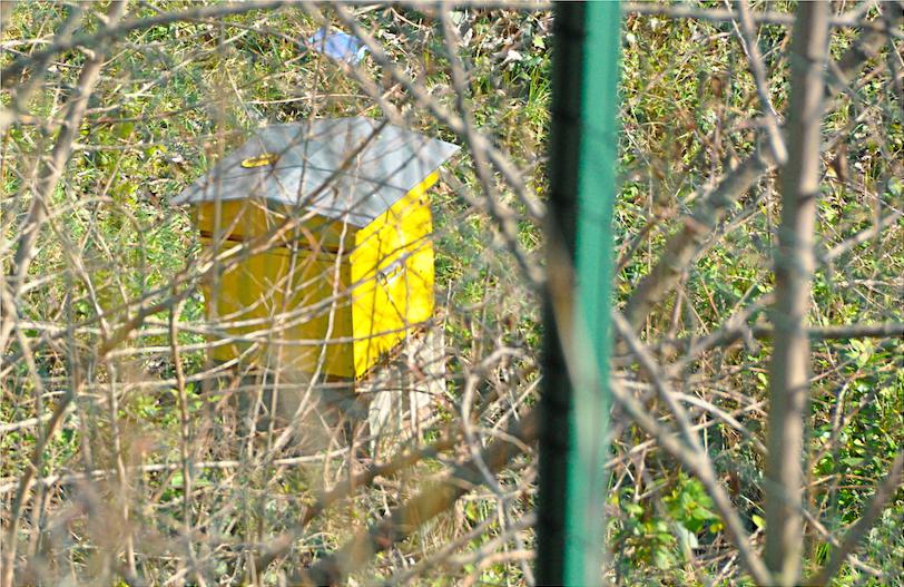 Saint-Mandé, sur l'ancienne sortie de la ligne de Paris-Bastille ruches du programme Abeille, sentinelle de l'environnement.